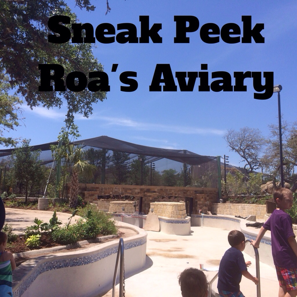 Roa's Aviary at Seaworld San Antonio